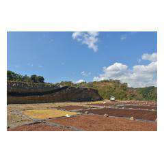 Land Plot.jpeg - Bali Villa Projects - Own a Holiday Home in Bali - Palm Living Bali