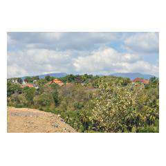 Plot Views - Bali Villa Projects - Own a Holiday Home in Bali - Palm Living Bali