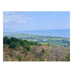 View From Building Site 0 - Bali Villa Projects - Own a Holiday Home in Bali - Palm Living Bali