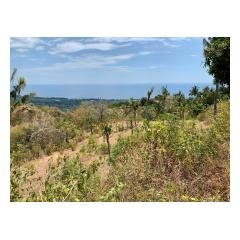 View From Building Site 4 - Bali Villa Projects - Own a Holiday Home in Bali - Palm Living Bali